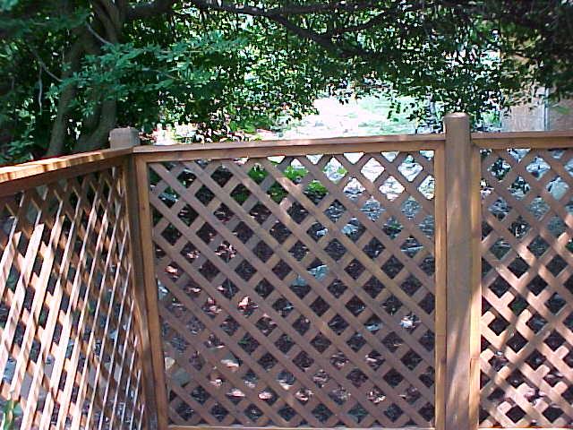 Choosing a Pool Fence