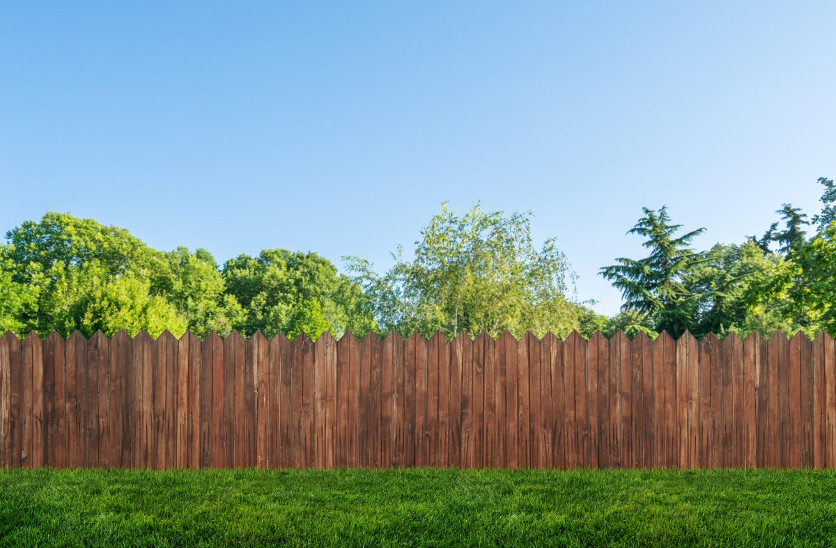 Should I Install A Privacy Fence?