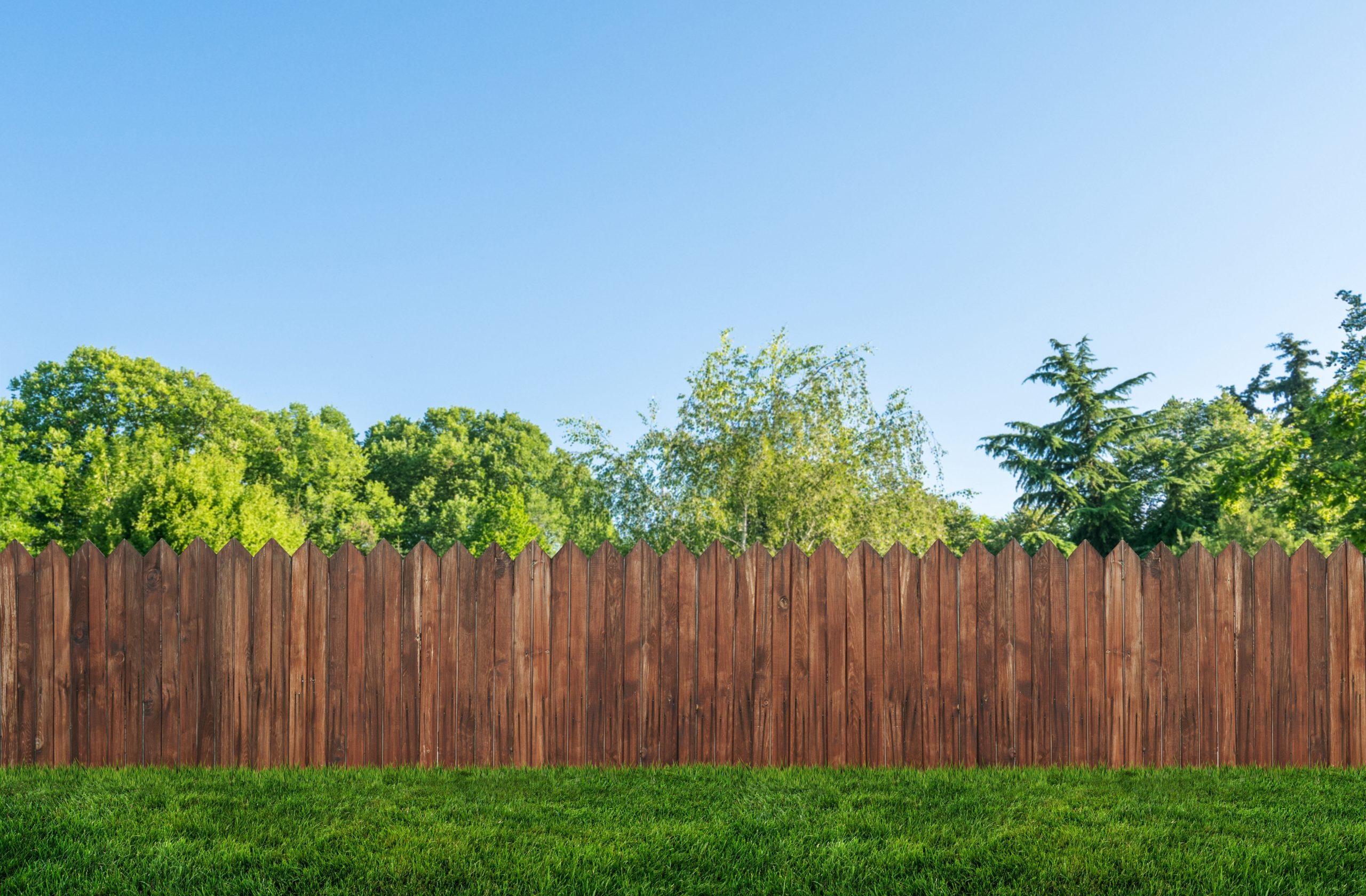 privacy fence in a backyard with bright foliage